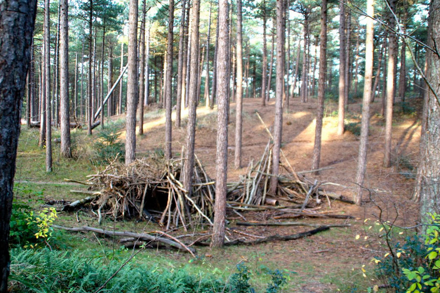 Uitzonderlijk Speelbos Fonteinsnol in Nationaal Park Duinen van Texel UL51