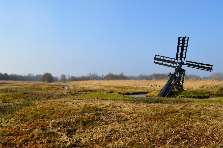 molen in weerribben