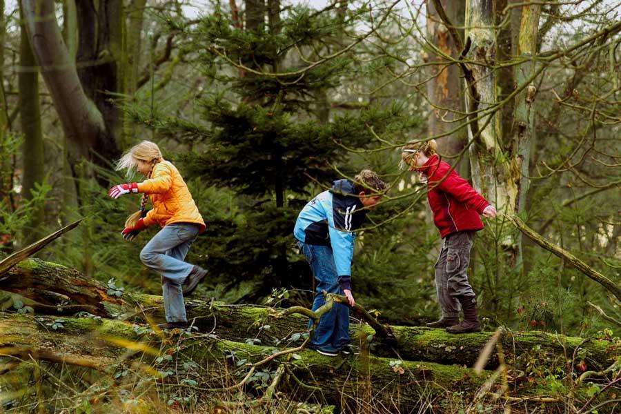Schouwen Duiveland Natuur  Recreatiewoning in schouwen mitula woningen